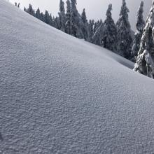 Snow surface: dry low density snow, 20-26 cm (8-10 in)