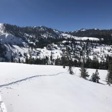Ski penetration : 2 inch (5 cm) on top of crust