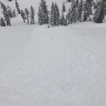 Rollerballs and pinwheelswould release below skis even on northfacing terrain