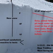 Snowpit near treeline, ~8,000 feet