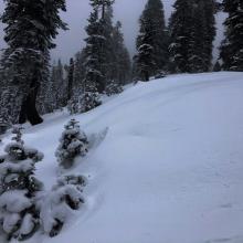 Snow starting to drift on leeward side of ridge