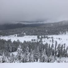 Looking west from Green Butte ridge 8300 feet