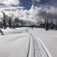Below treeline Old Ski Bowl 4-6 inch snowmobile penetration