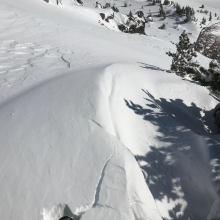 Small wind slab on lee of tree well Giddy, Giddy Gulch