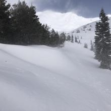 Near treeline- east facing terrain is where the fresh drifts are forming