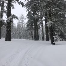 2-3 inch ski penetration