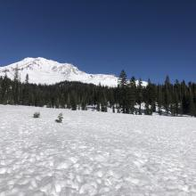 Bunny Flat, looking east at Mount Shasta