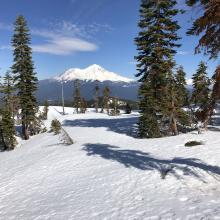 Firm snowpack on Center Peak's ridge. Mount Shasta in the distance