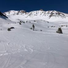 Looking up Old Ski Bowl