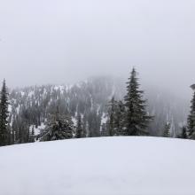 Looking east toward Gray Butte