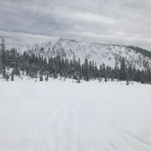 Near treeline, a look over at Gray Butte