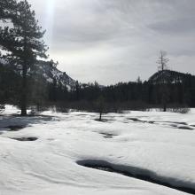 Lower Deadfall Meadows