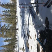 Deadfall snow survey site