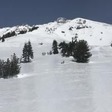 Lower section of Sargents Spur ridge