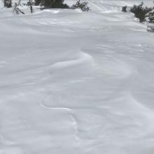 Snow surfaces near treeline