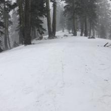 Conditions below treeline on Green Butte Ridge