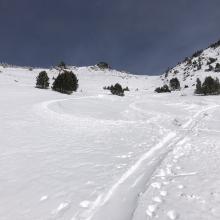 Ski penetration 2-4 in