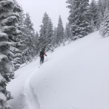 Breaking trail, Ski penetration (PS) =  8 -10 in