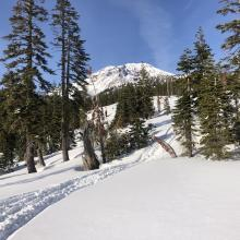 A deeper snowpack exists below treeline.