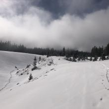 Various fog layers lingered below 7,000 feet