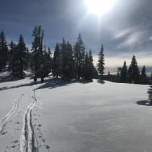 Skin track near the top of Parks Creek Summit