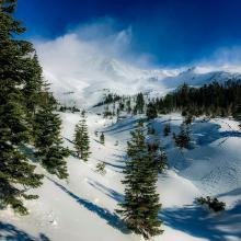 Below treeline, lower Avalanche Gulch, 1100 hours