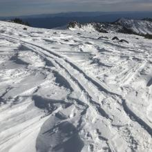 Wind effect at 8,500 feet on a southerly facing slope, Mount Shasta