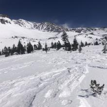 Looking up Avalanche Gulch
