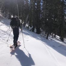 Ski penetration (PS) = 0-3in (0-5 cm)