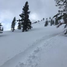Deep tracks near Upper Cliff Lake
