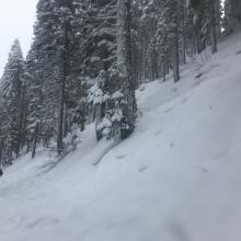 Additional D2 storm slab along the 31 road, east of the MS Ski Park, 6,300 feet, below treeline